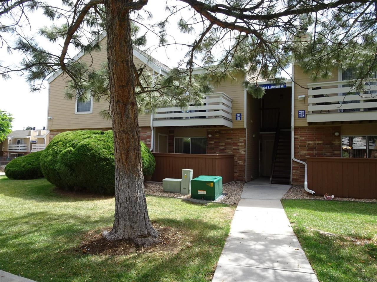 3320 S Ammons Street #101, Lakewood, CO 80227 (MLS #3482211) :: 8z Real Estate