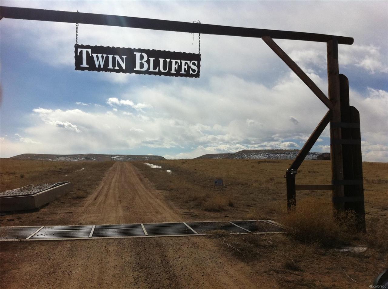 0 Twin Bluffs Road - Photo 1
