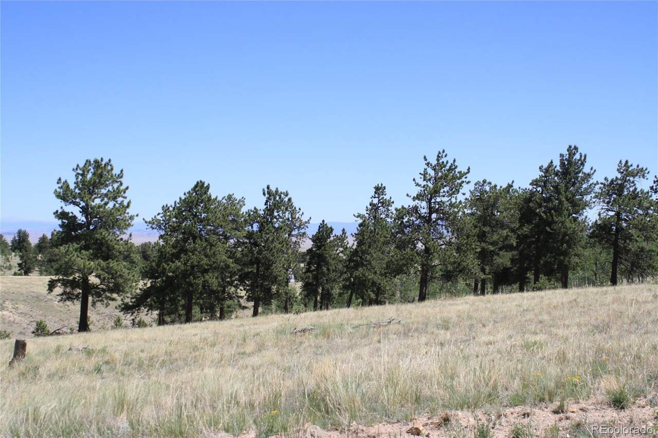 10617 Ranch Road - Photo 1