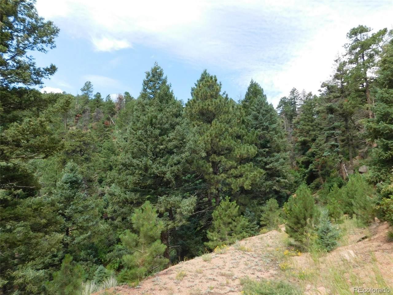 2298 Elk Park Road - Photo 1