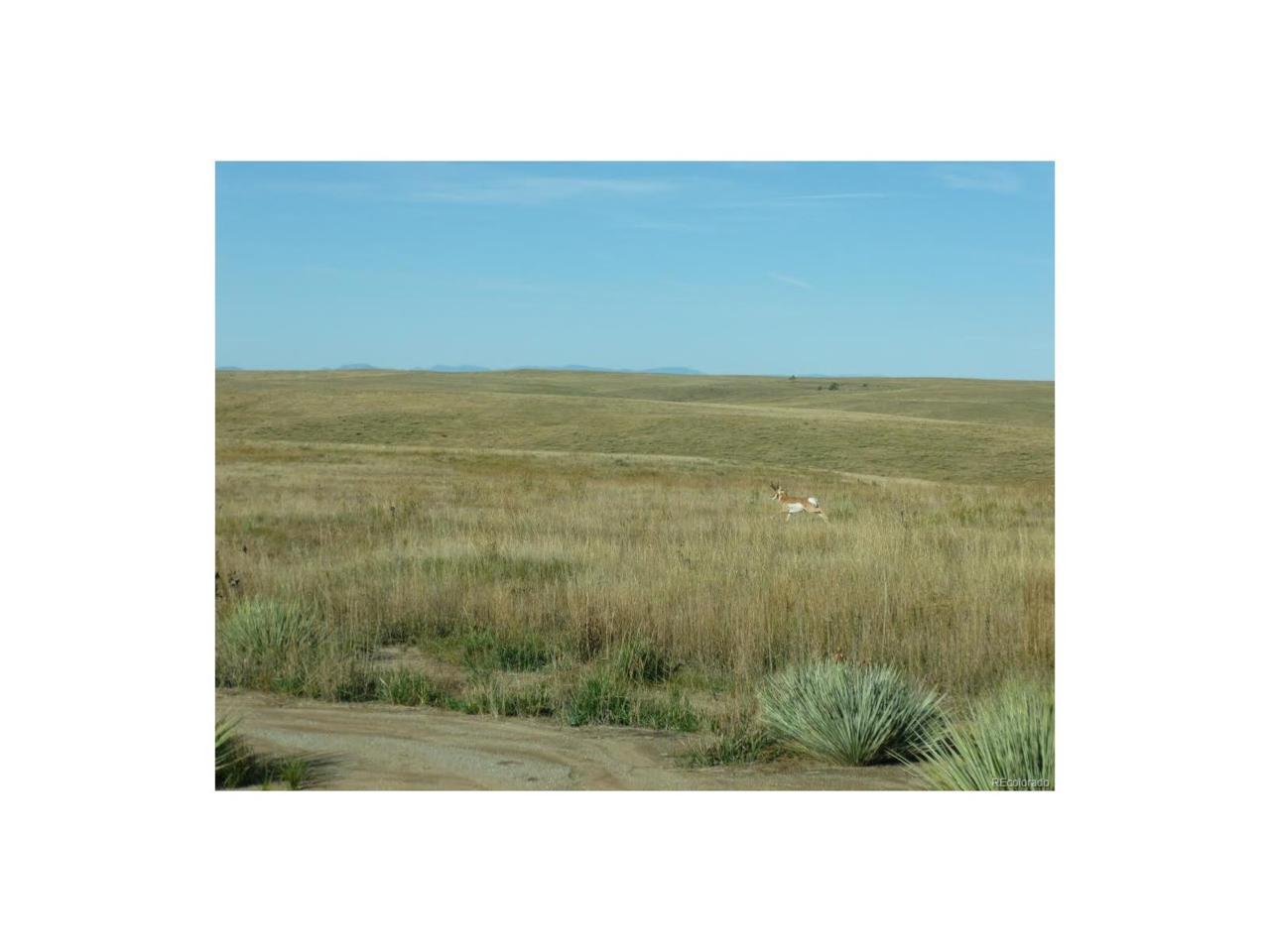 14095 Long View Circle, Kiowa, CO 80117 (MLS #4215367) :: 8z Real Estate