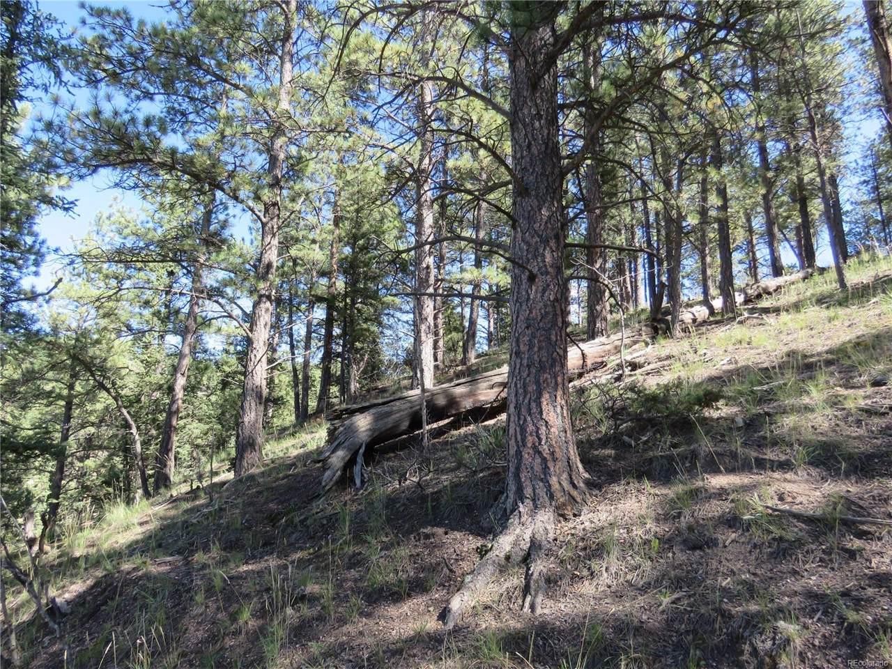 291 Mesa Drive - Photo 1
