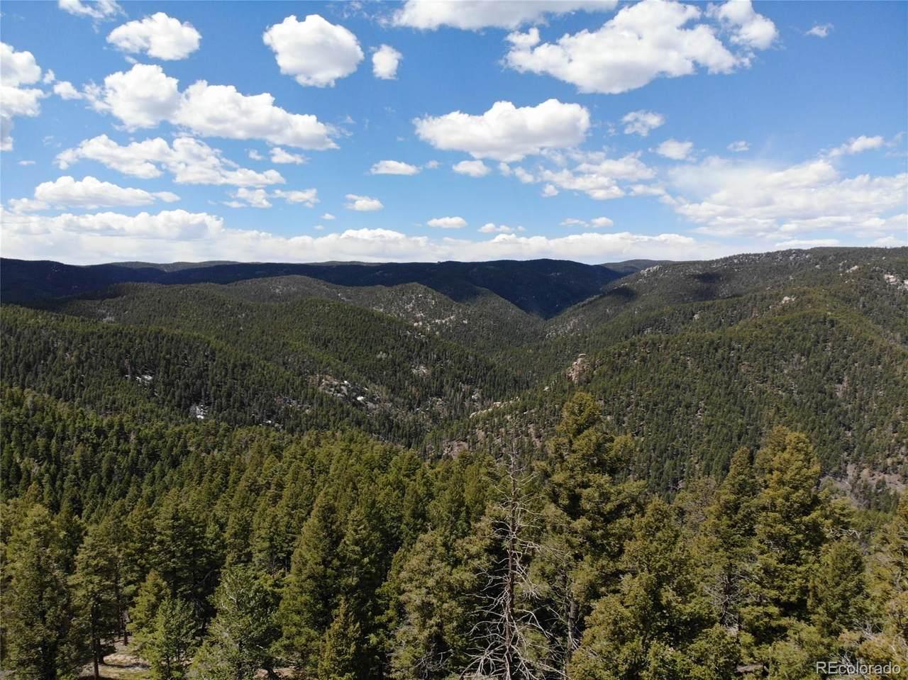 13633 Spruce Creek Circle - Photo 1