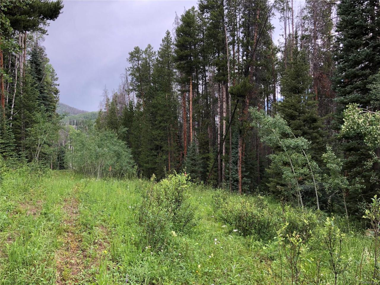 Springboard Trail - Photo 1