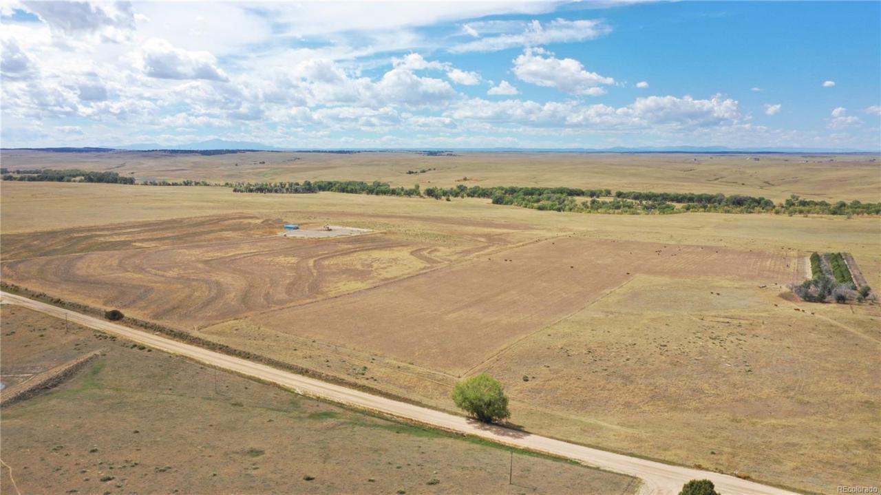 Parcel 4 Comanche Creek Road - Photo 1