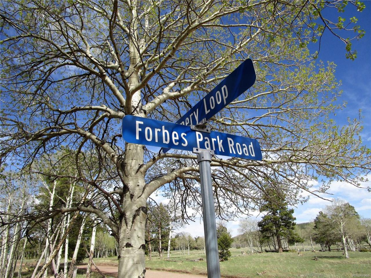 1389 Forbes Park Road, Fort Garland, CO 81133 (MLS #4884555) :: 8z Real Estate