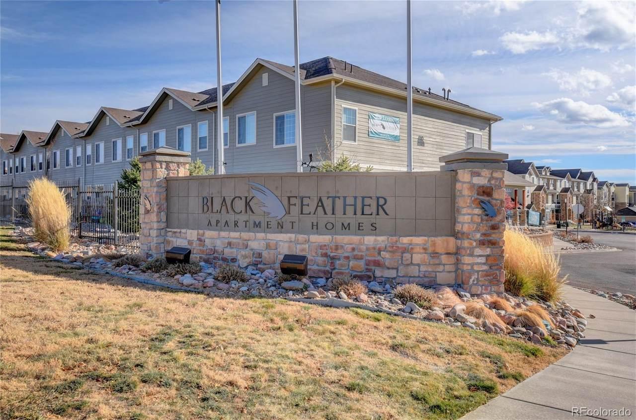 494 Black Feather Loop - Photo 1