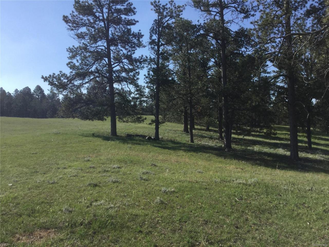 0 Private Road 126, Elizabeth, CO 80107 (MLS #5047699) :: 8z Real Estate