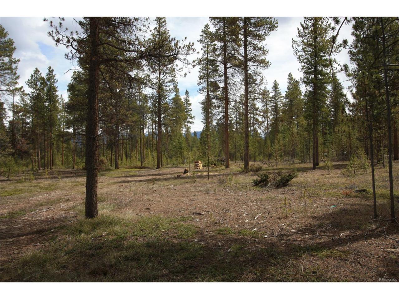 34 County Road 5171B, Fraser, CO 80442 (MLS #5313088) :: 8z Real Estate