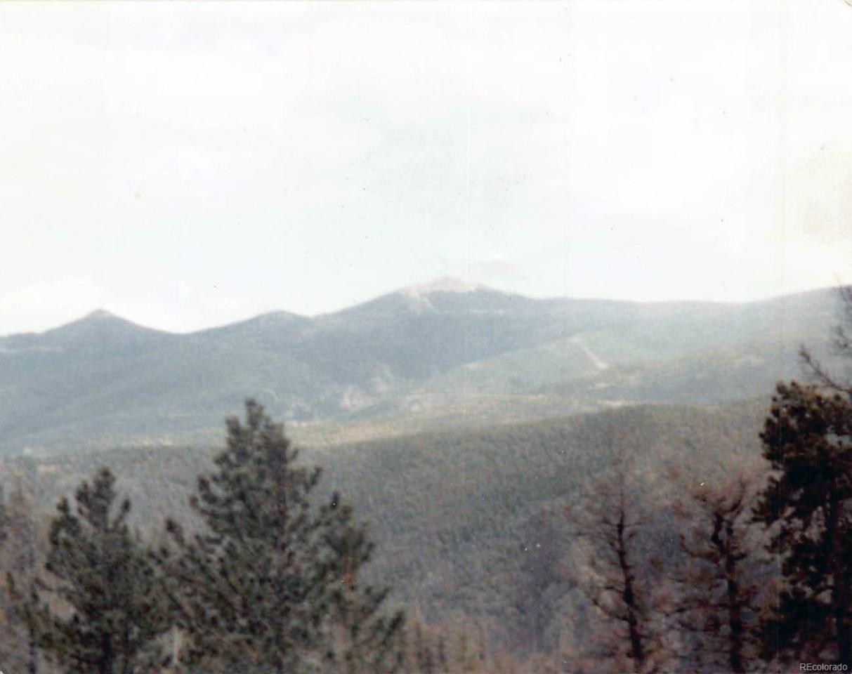 0000 Alps Mountain Road - Photo 1