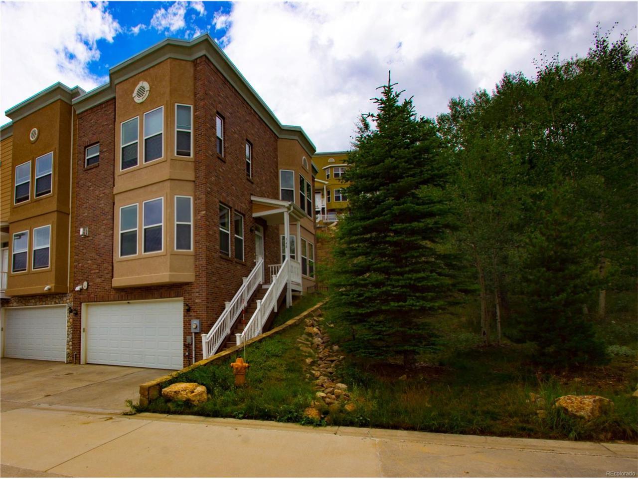 748 Louis Drive, Central City, CO 80427 (MLS #5418684) :: 8z Real Estate