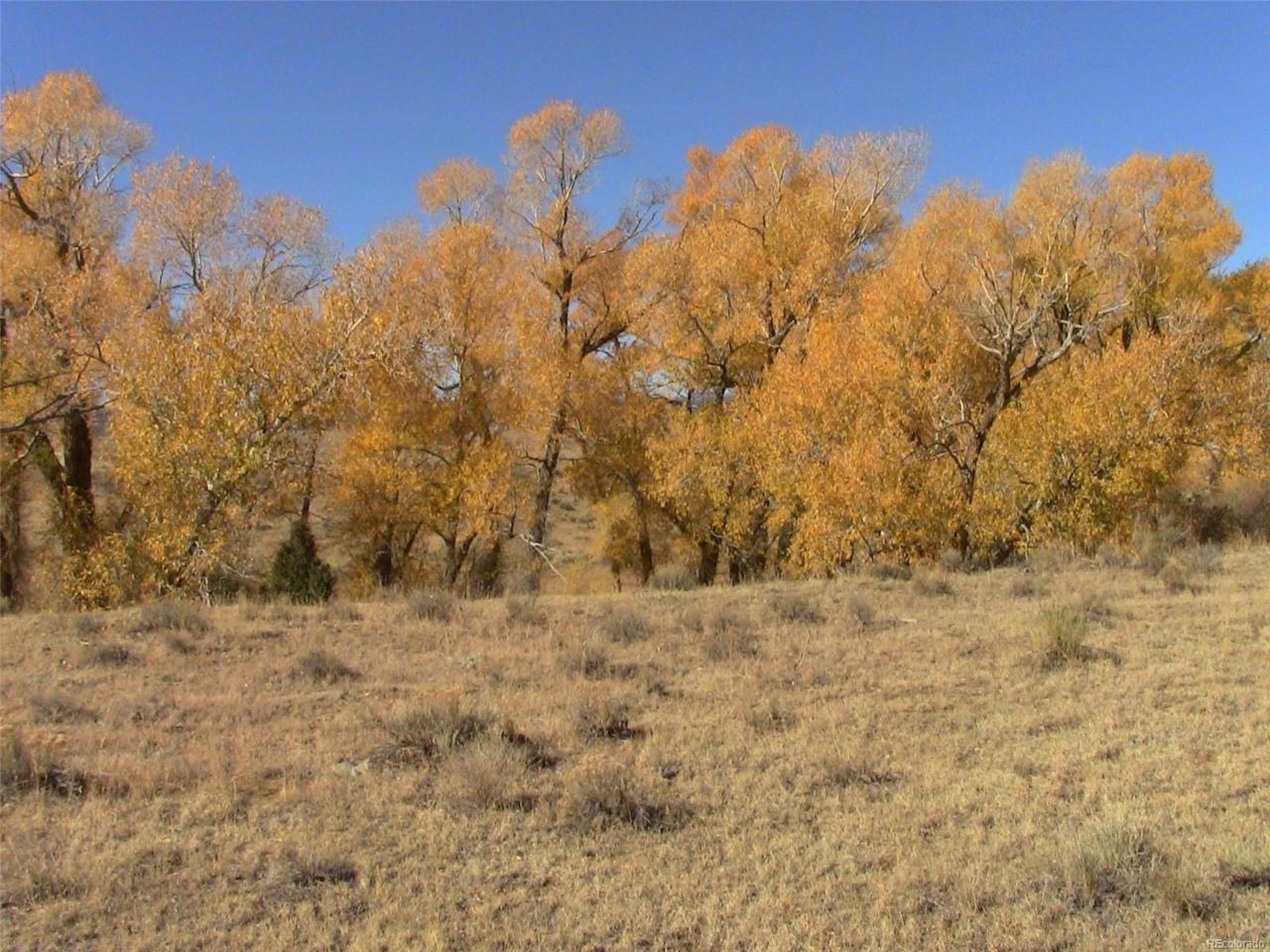 106 & 107 Alamosa River Estates - Photo 1