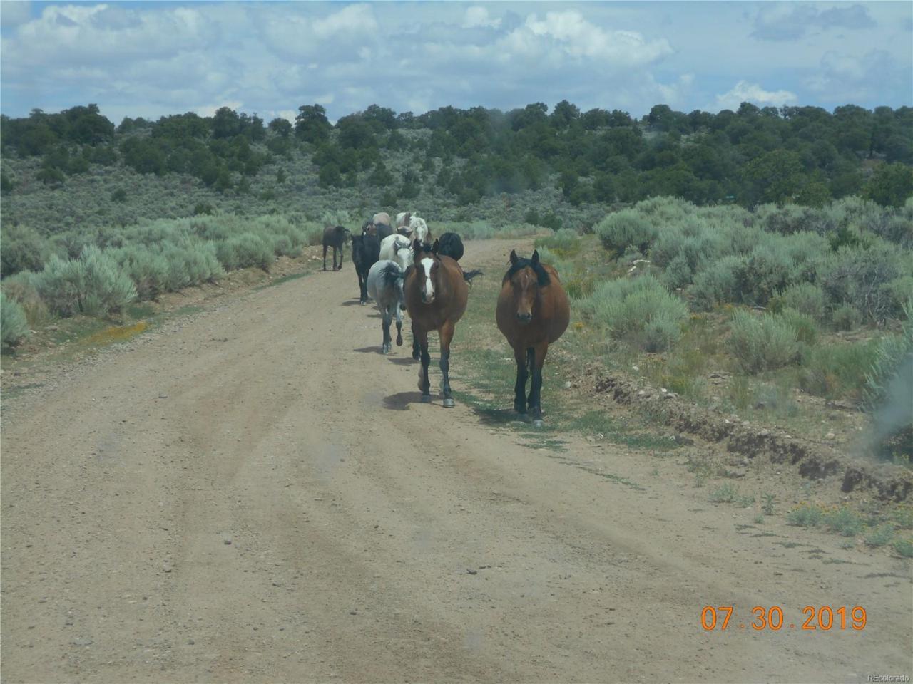 Wildhorse Drive - Photo 1