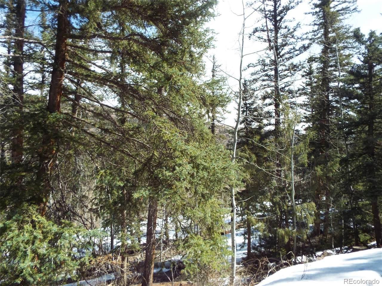 1729 Clarke Mountain Lane - Photo 1