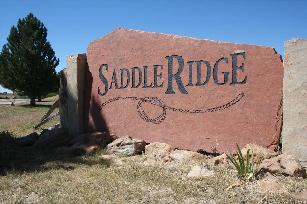 6 Saddle Ridge Drive - Photo 1