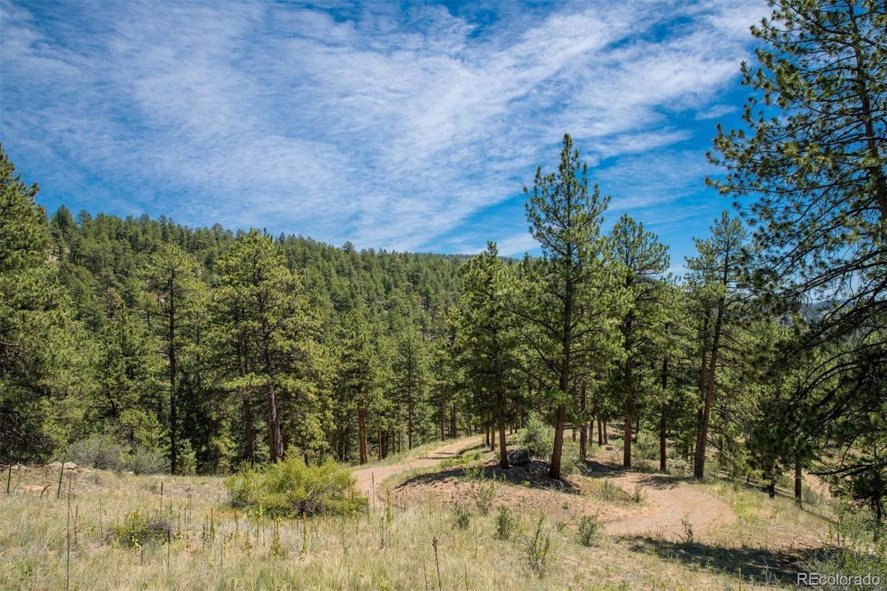 14433 Lot 2 Elk Creek Road - Photo 1