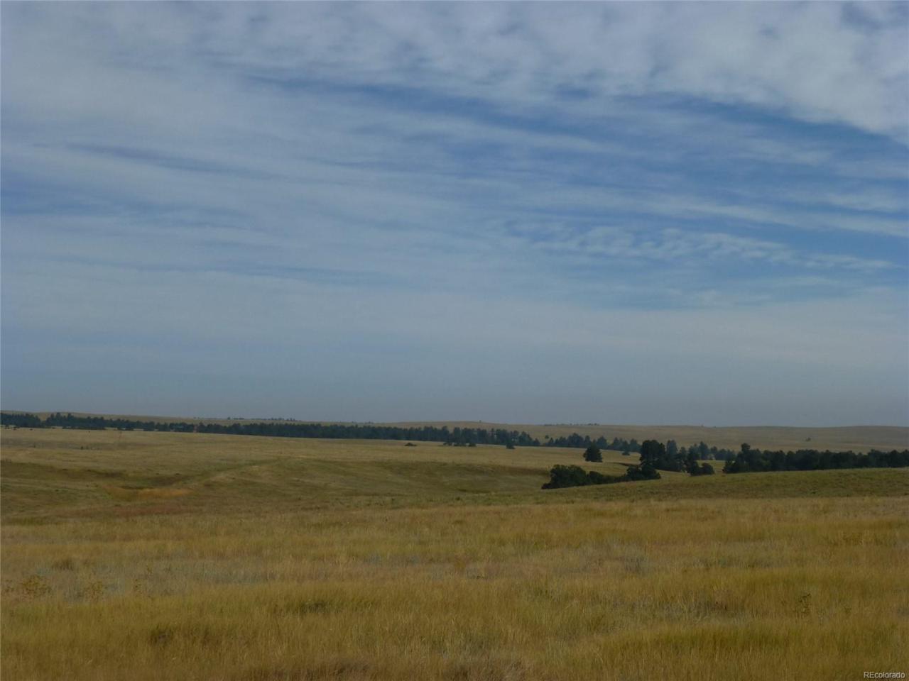 25535 Shorthorn Circle - Photo 1
