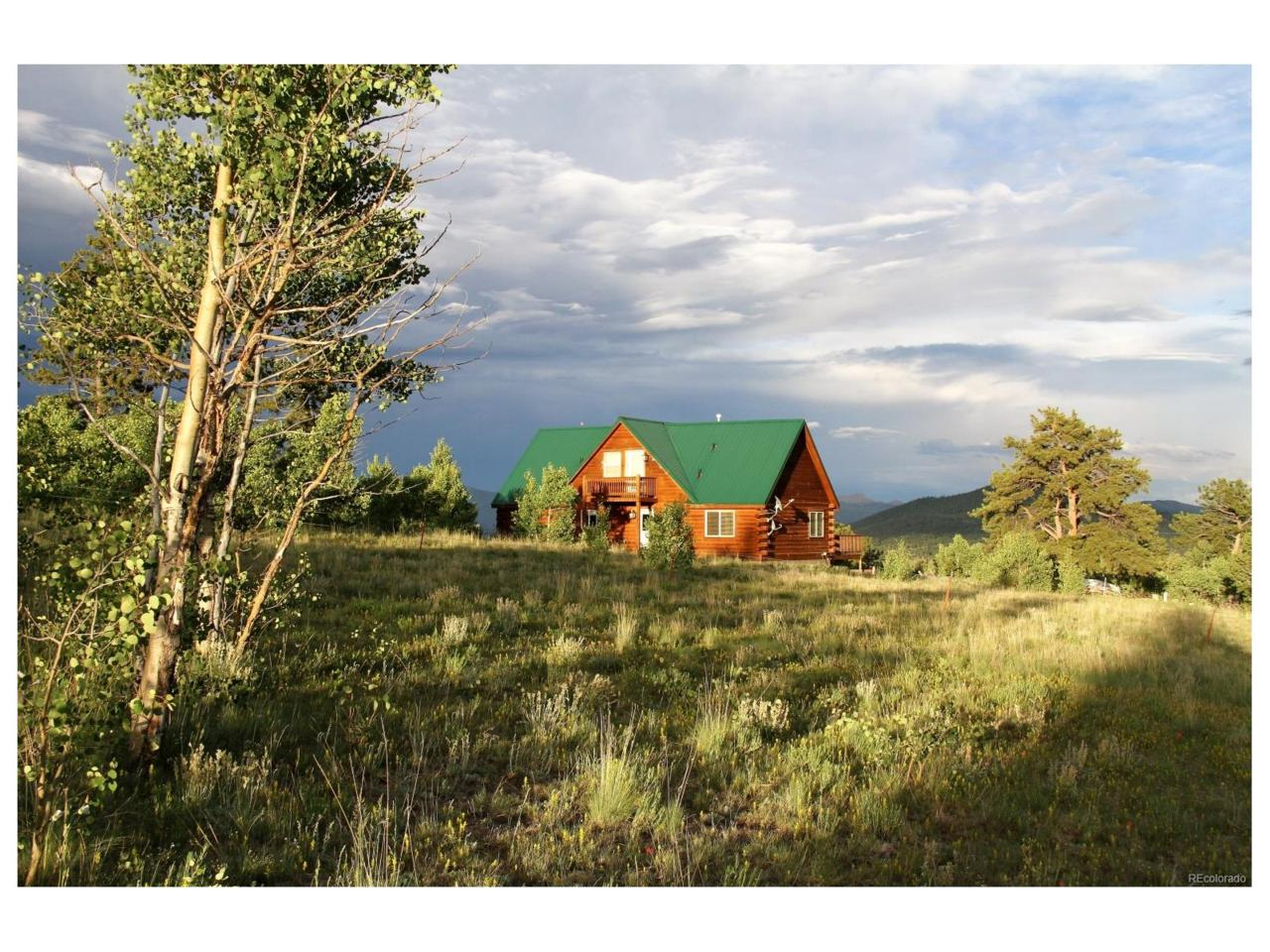 733 Warpath Road, Como, CO 80432 (MLS #6626394) :: 8z Real Estate