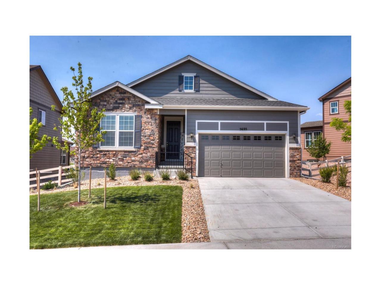 5695 Echo Hollow Street, Castle Rock, CO 80104 (MLS #6922317) :: 8z Real Estate