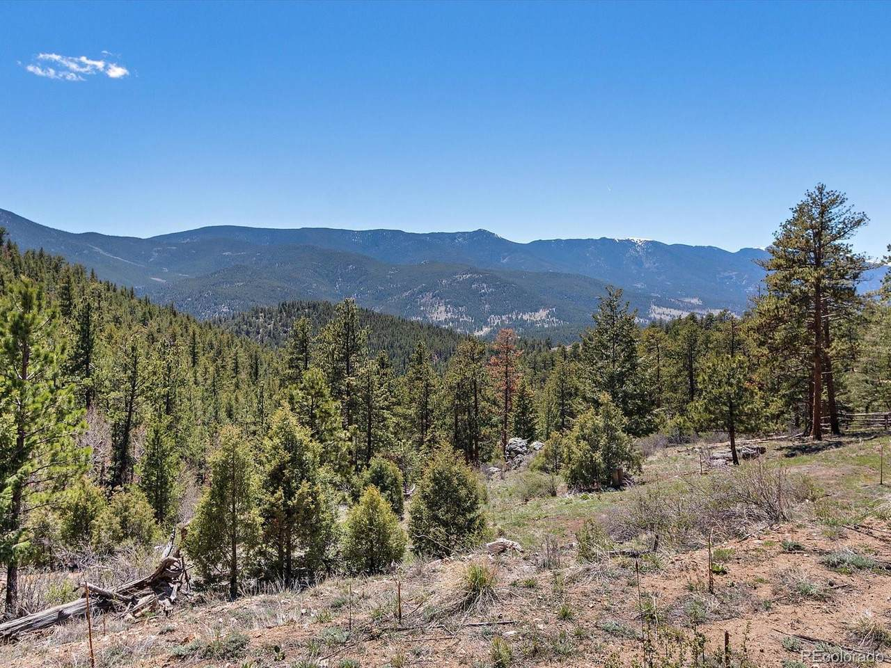 1448 Ridge Road - Photo 1