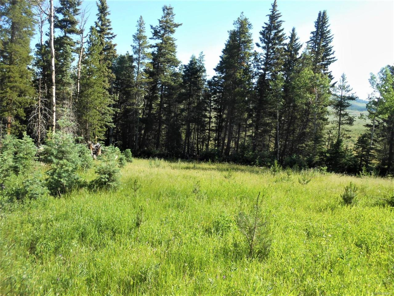 473 County Road W.8 Road, Fort Garland, CO 81133 (MLS #7030307) :: 8z Real Estate