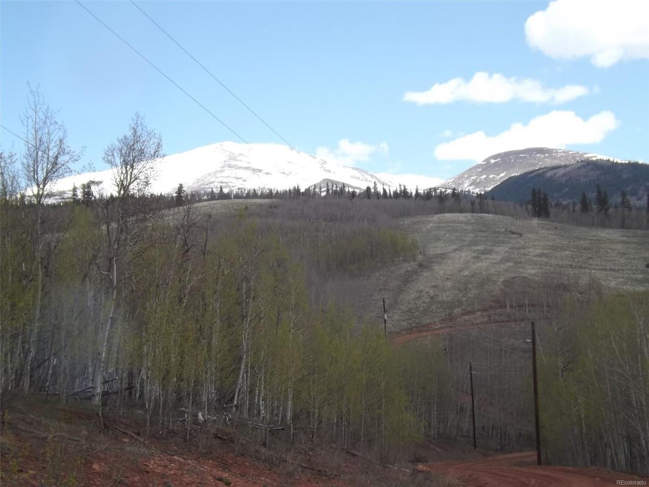 666 Palmer Peak Drive - Photo 1