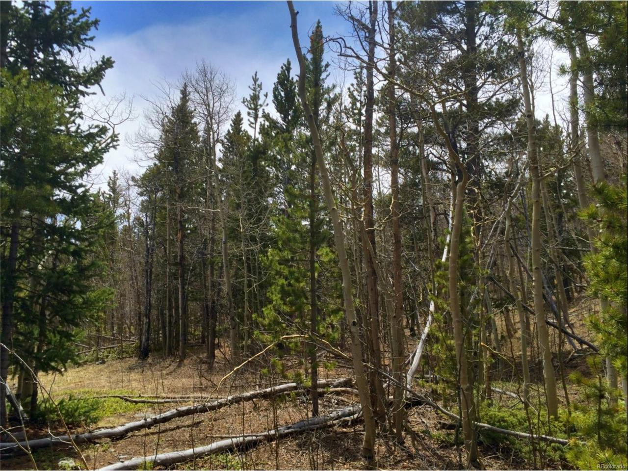 0 Vots Drive, Fairplay, CO 80440 (MLS #7066975) :: 8z Real Estate