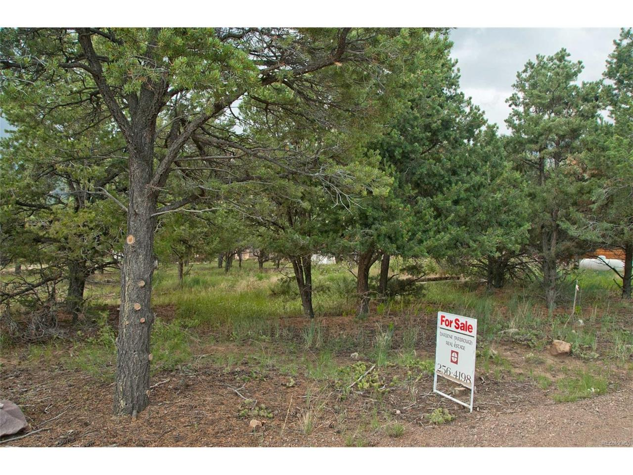 235 S Hemlock Street, Crestone, CO 81131 (MLS #7568805) :: 8z Real Estate