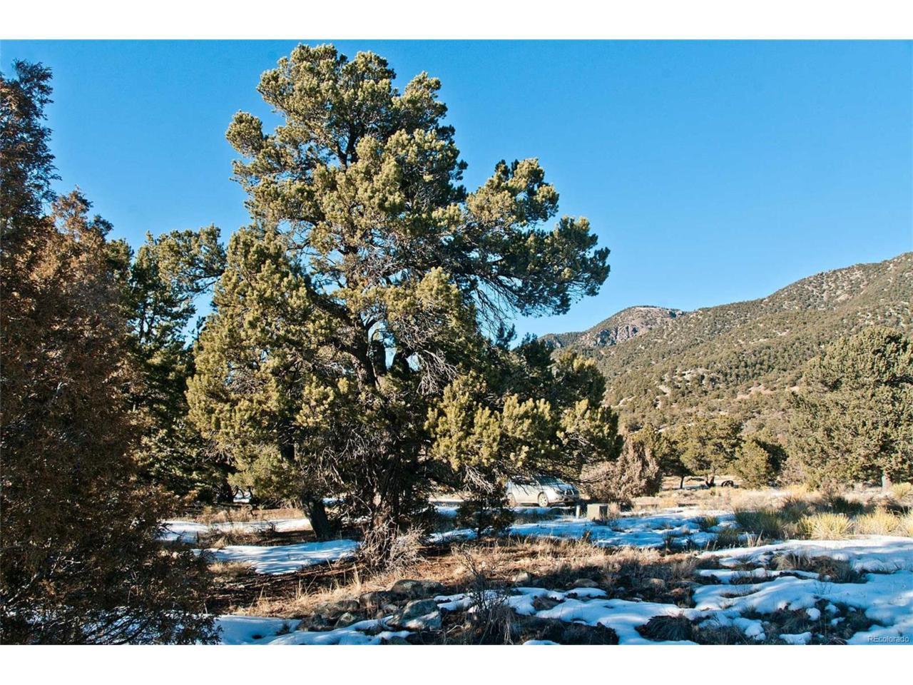 4272 Rambling Way, Crestone, CO 81131 (MLS #8683606) :: 8z Real Estate