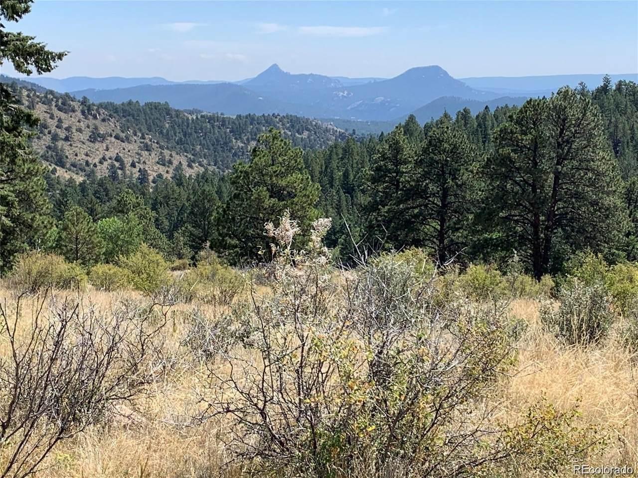 14725 Wetterhorn Peak Trail - Photo 1
