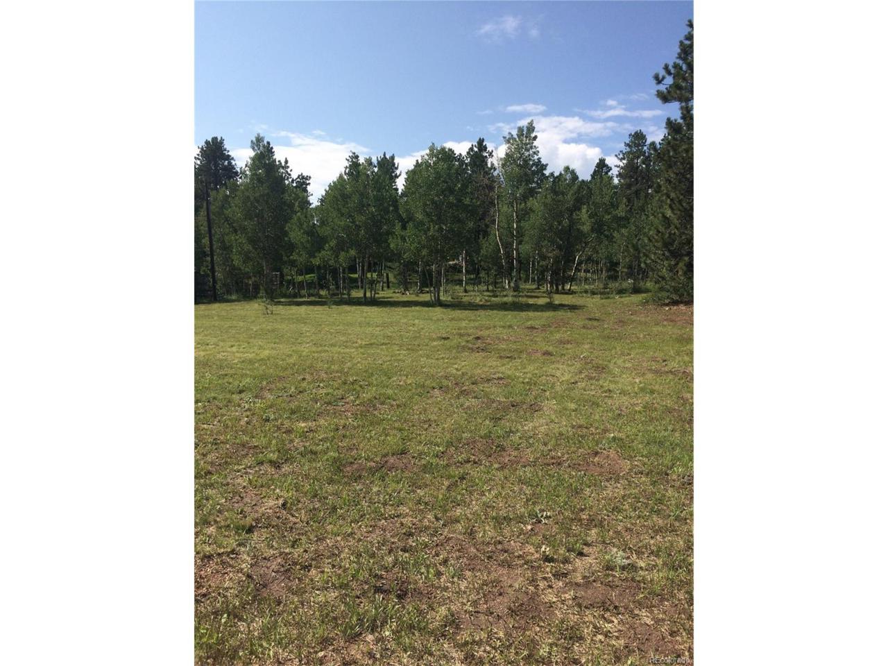 Mount Evans Boulevard, Pine, CO 80470 (MLS #9523621) :: 8z Real Estate