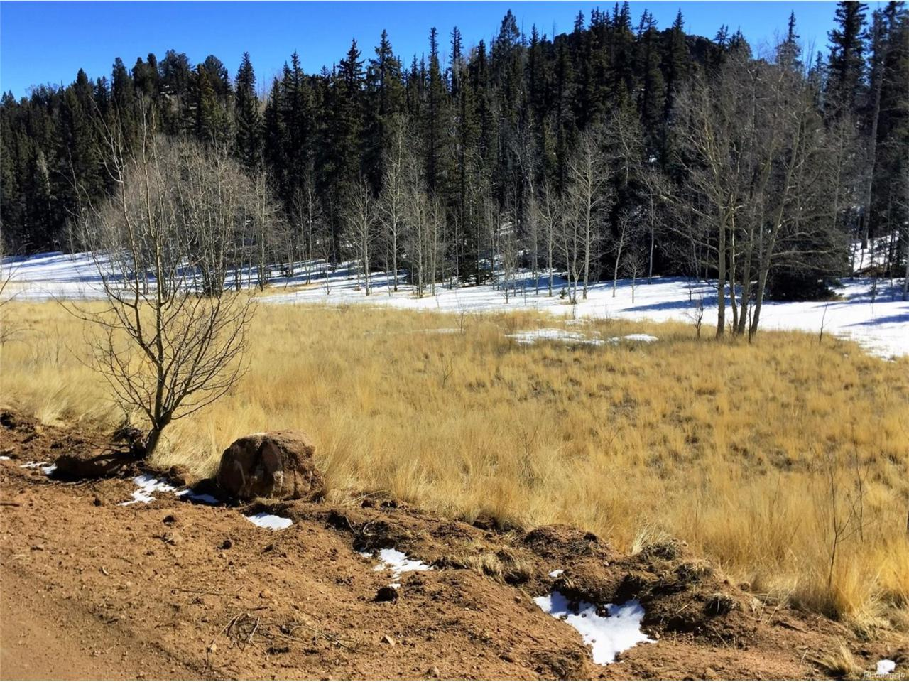 238 Spearpoint Road, Como, CO 80432 (MLS #9633906) :: 8z Real Estate
