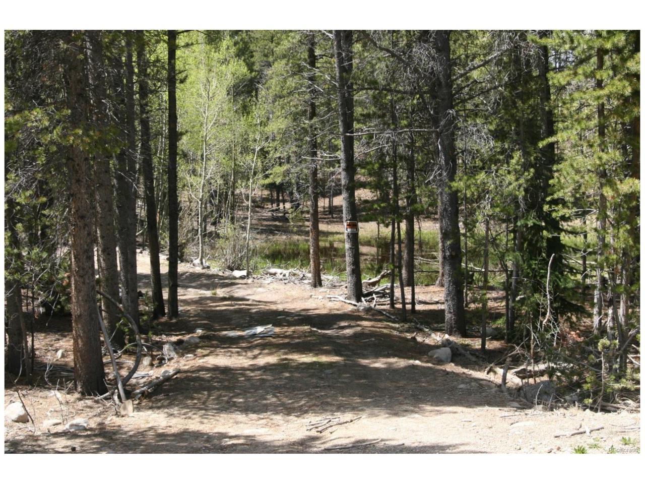 1050 Rollies Trail, Alma, CO 80420 (MLS #9875358) :: 8z Real Estate
