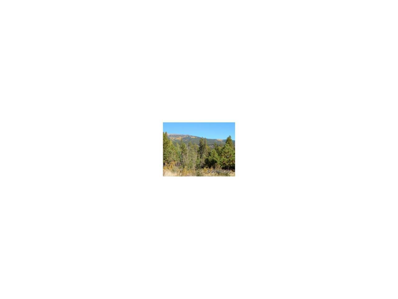 30277 Eagles Ridge, Buena Vista, CO 81211 (MLS #C230737) :: 8z Real Estate