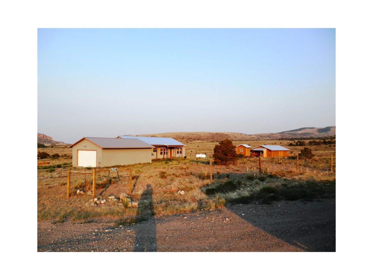 142 Antelope Trail, Del Norte, CO 81132 (MLS #R715578) :: 8z Real Estate