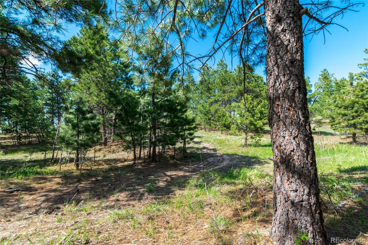 18925 Hilltop Pines Path - Photo 1
