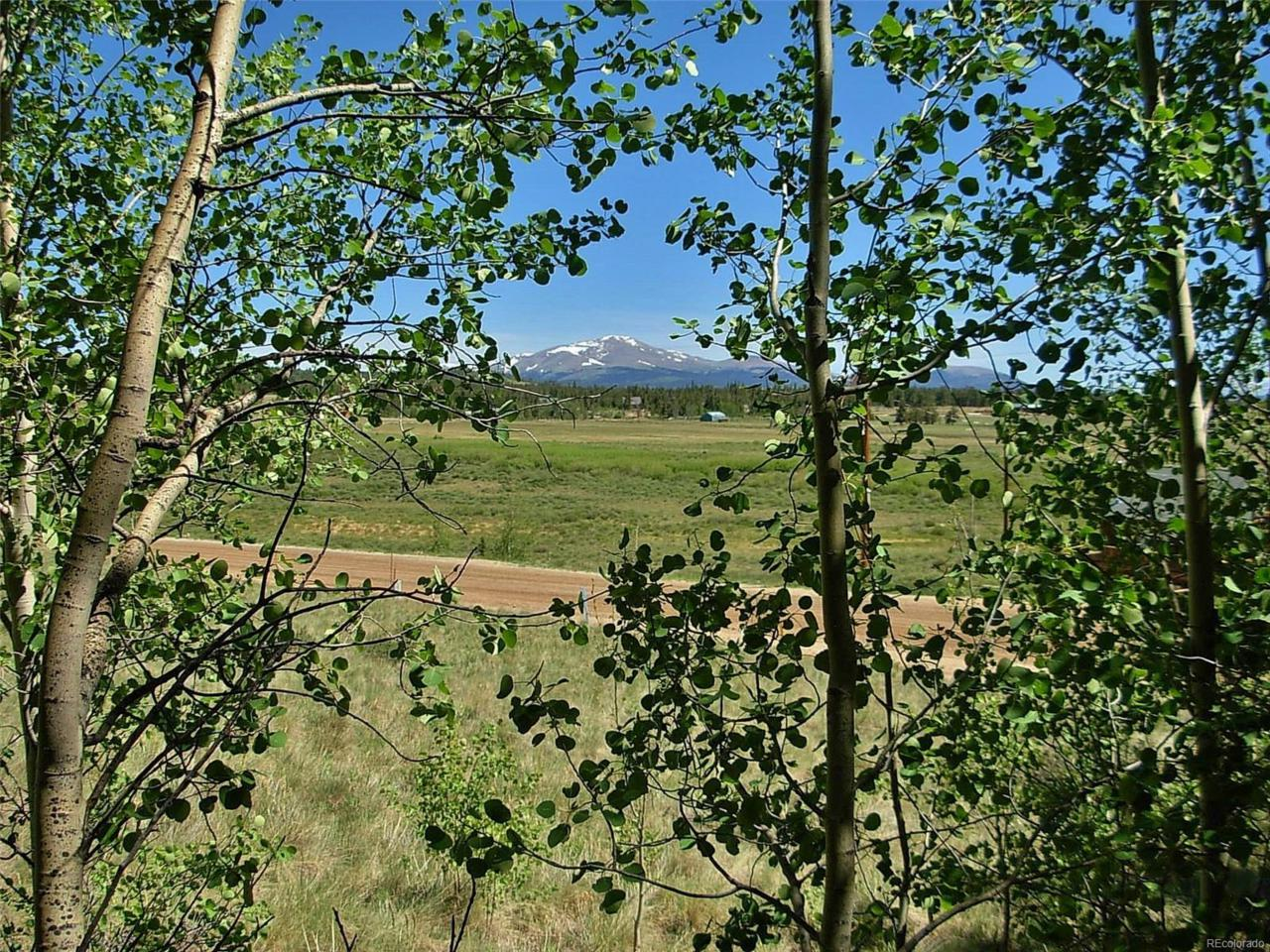 1529 High Creek Road, Fairplay, CO 80440 (MLS #2532215) :: 8z Real Estate