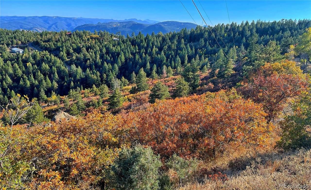 Elk Mountain Trail - Photo 1