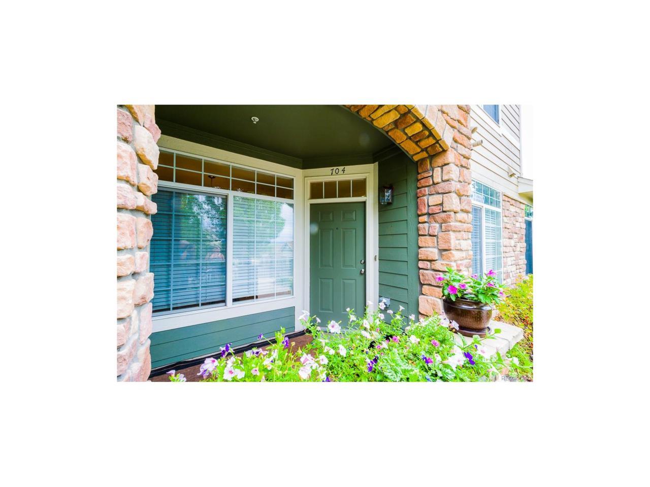 457 Black Feather Loop #704, Castle Rock, CO 80104 (MLS #3818652) :: 8z Real Estate