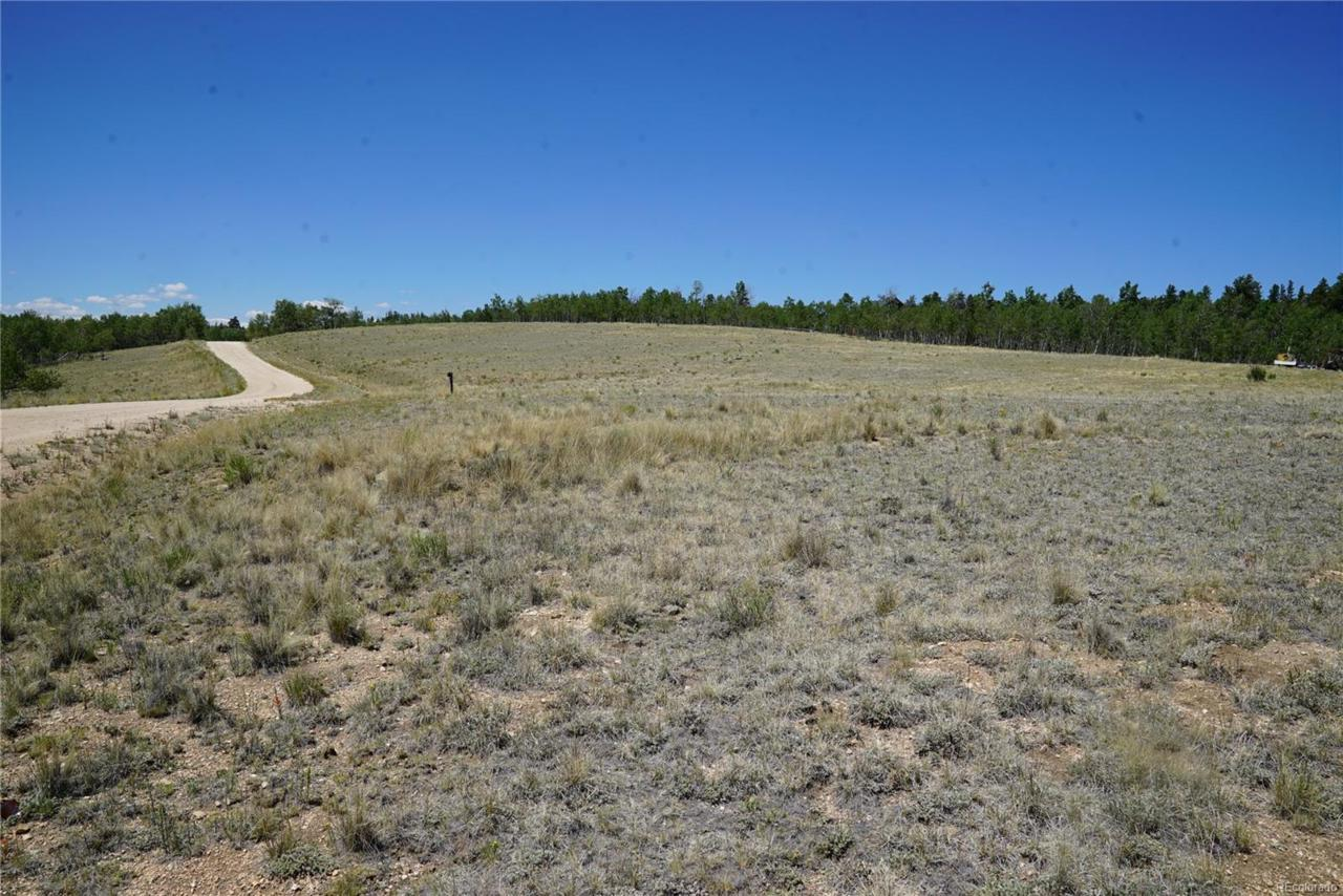 1201 Pinto Trail - Photo 1