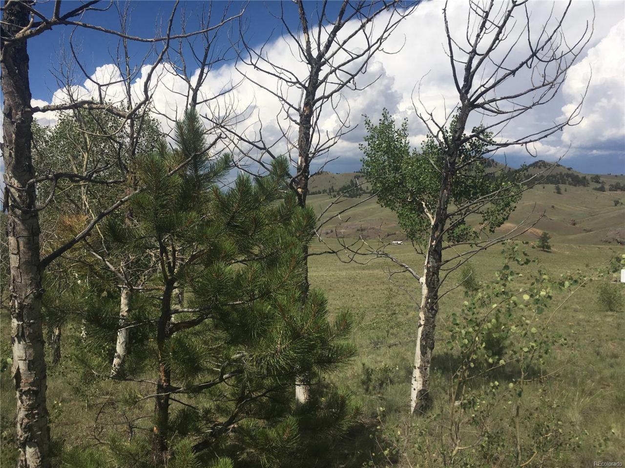000 Cherokee Trail, Hartsel, CO 80449 (MLS #4534860) :: 8z Real Estate