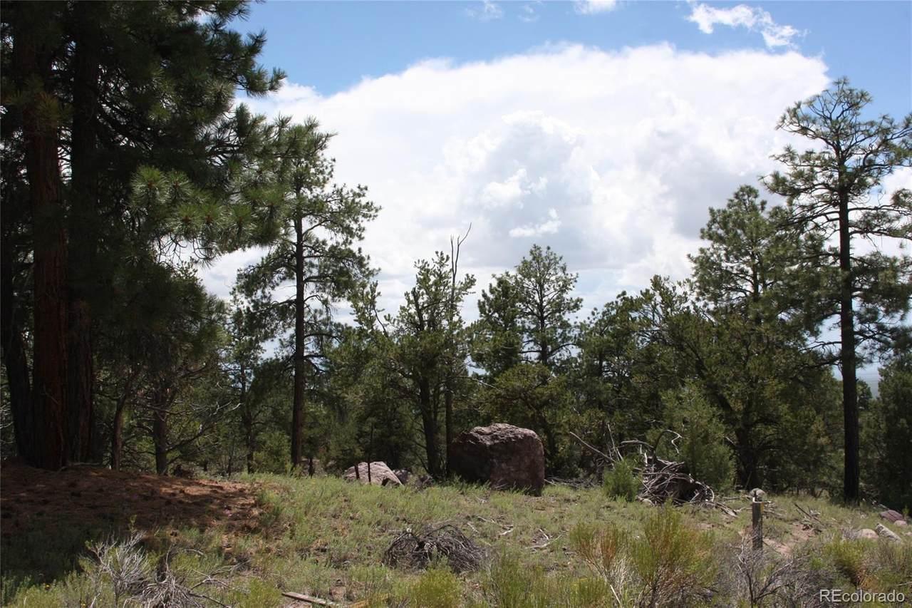 1876 Lone Pine Way - Photo 1
