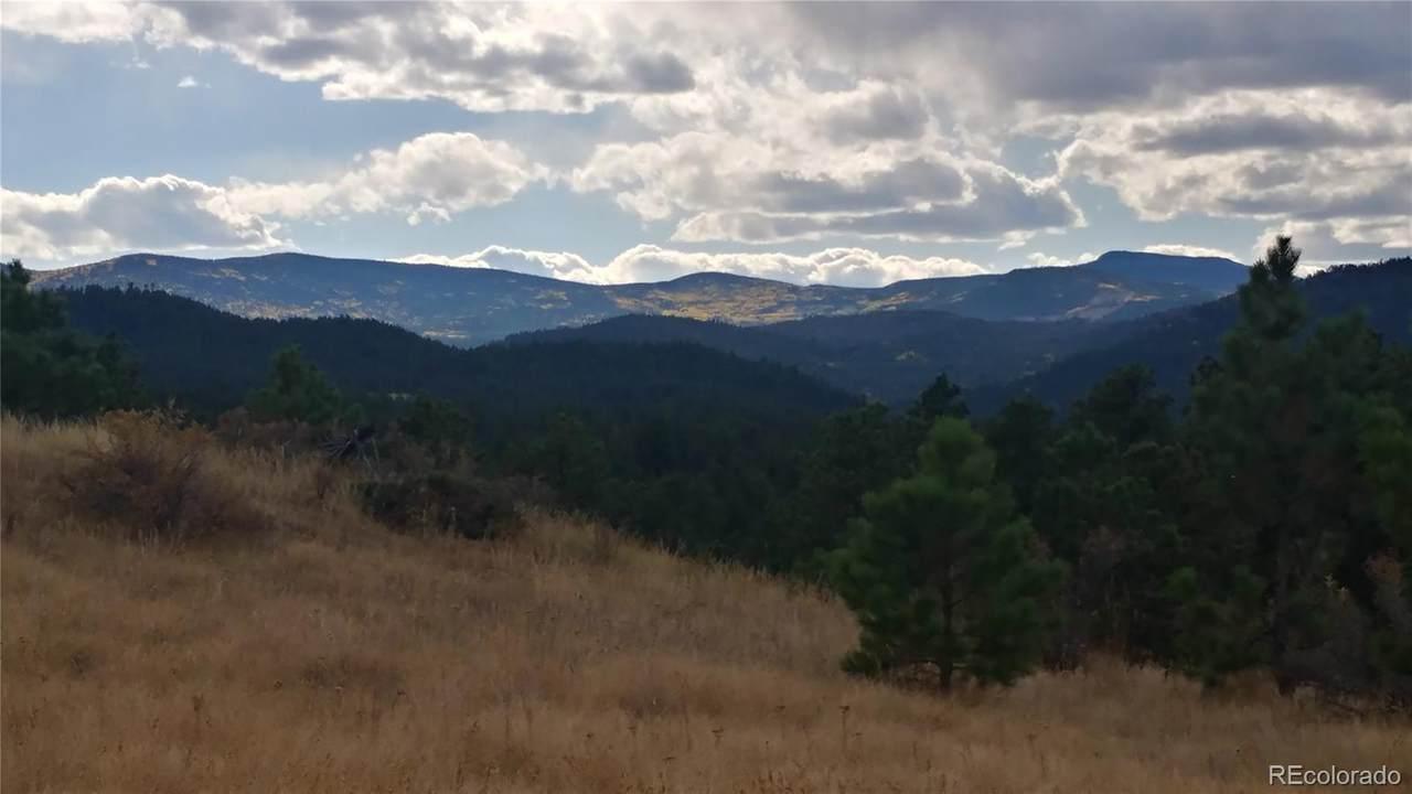 28167 Lone Elk Trail - Photo 1