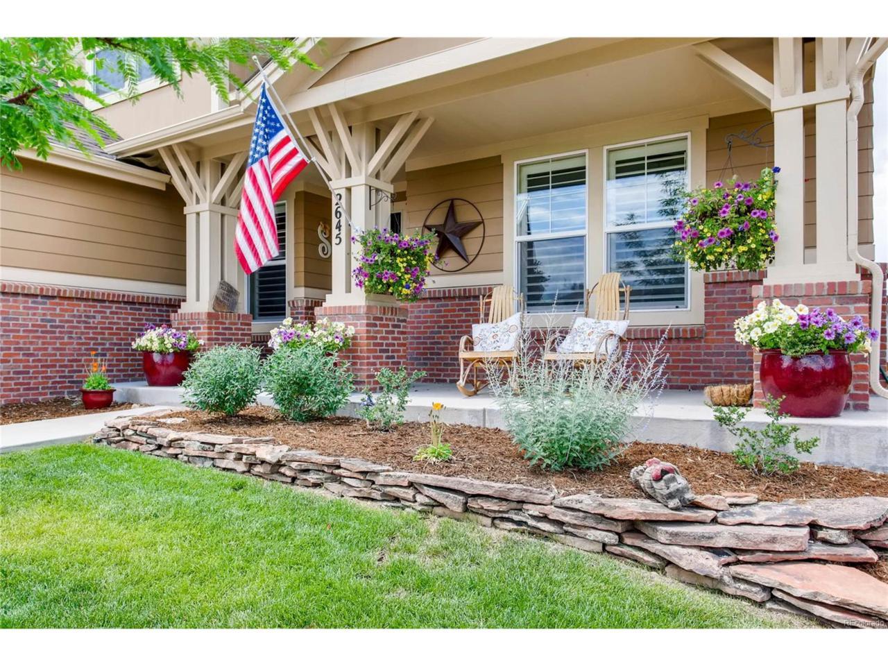 2645 Mclean Court, Castle Rock, CO 80109 (MLS #6952614) :: 8z Real Estate