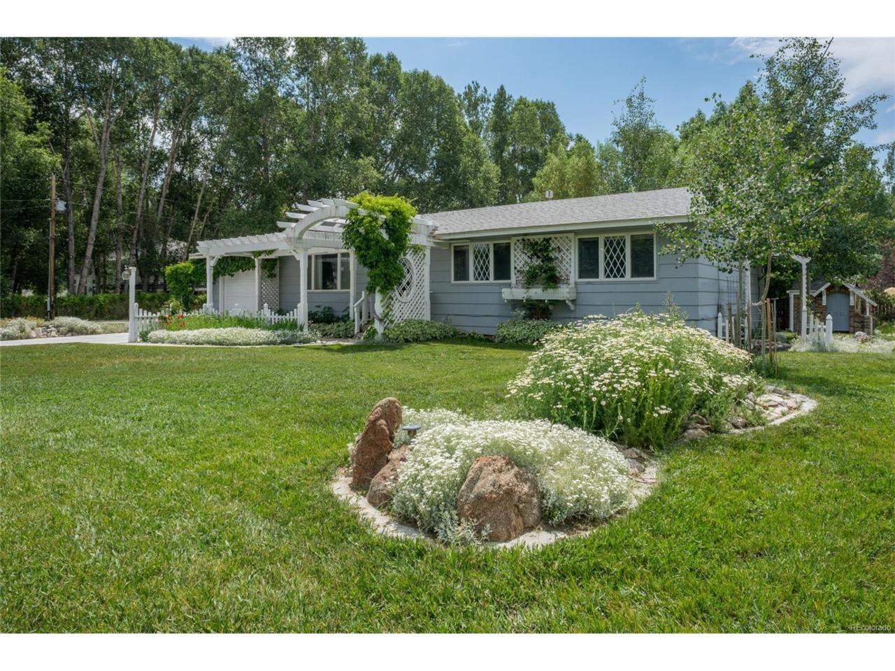 811 W Main Street, Buena Vista, CO 81211 (MLS #7862251) :: 8z Real Estate
