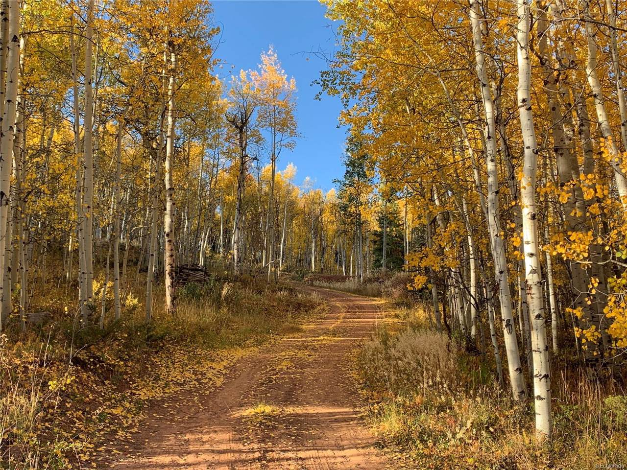 496 County Road 412 - Photo 1