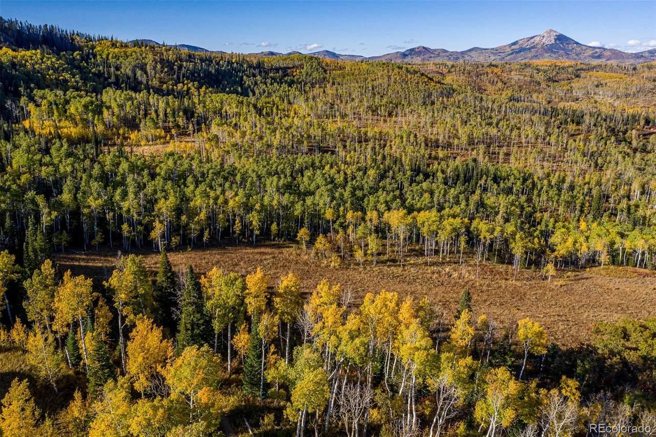24175 Mcalpin Trail - Photo 1