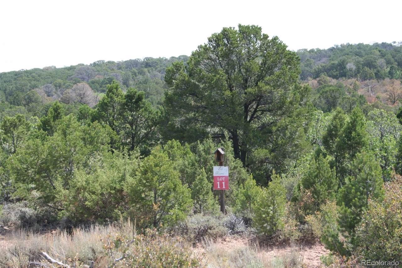 11 Elk Reserve Road - Photo 1