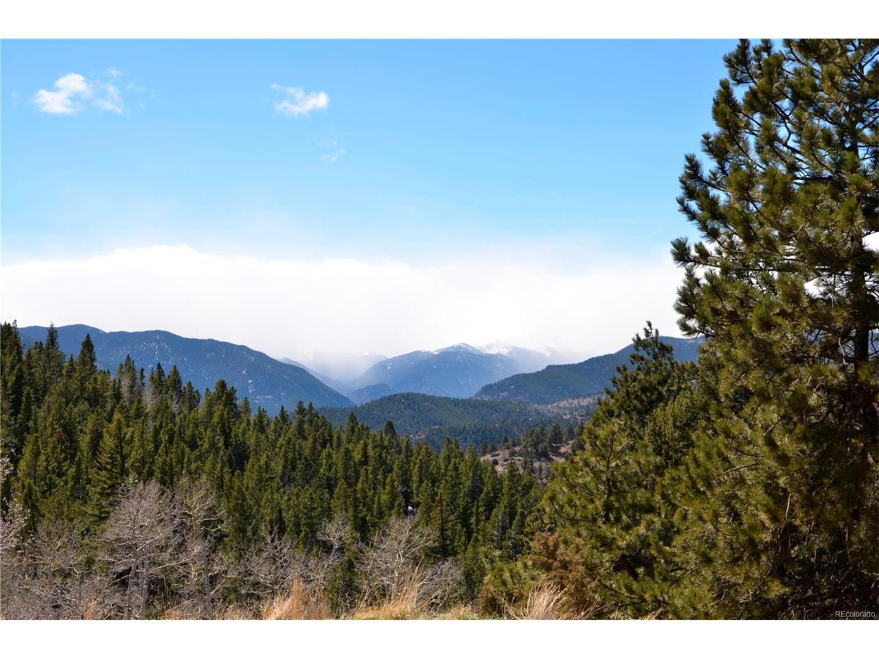 Chinook Road, Idaho Springs, CO 80452 (MLS #1787512) :: 8z Real Estate