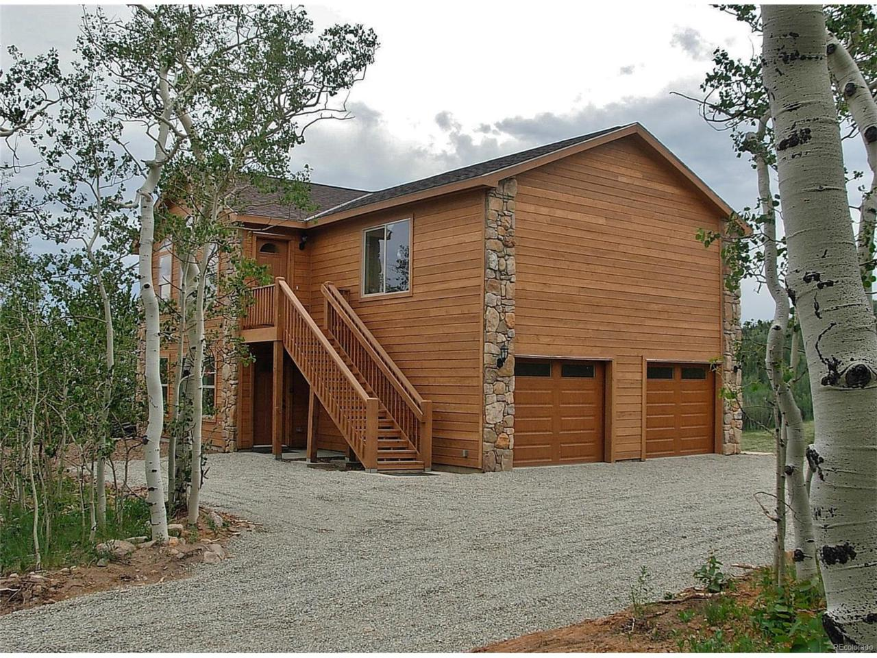 2545 High Creek Road, Fairplay, CO 80440 (MLS #2373548) :: 8z Real Estate